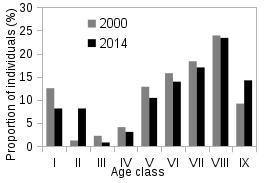 Graph of age distribution pattern