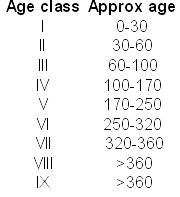 Table of age classes